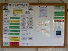 Tablero de actividades diario, Lady Elliot Island