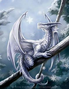 "Winter Dragon"" Artwork by Anne Stokes Magical Creatures, Fantasy Creatures, Mythological Creatures, Fantasy Kunst, Fantasy Art, Fantasy Wesen, Guerrero Dragon, Dragon Oriental, Snow Dragon"