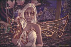 Fairy-Pirate-2