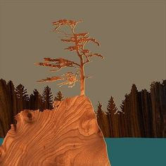 jefdesigns Sitka Spruce, Oregon Print
