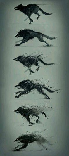 Black dog dissipates.