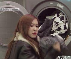 Meme Faces, Funny Faces, Yg Entertainment, South Korean Girls, Korean Girl Groups, Kpop, Blackpink Funny, Cute Rose, Blackpink Memes