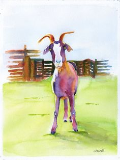 billie goat white boer farm watercolor young by AnnetteBennett Goat Paintings, Watercolor Art Paintings, Watercolor Animals, Artist Painting, Animal Paintings, Painting Prints, Art Prints, Watercolours, Goat Picture