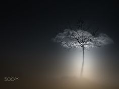 . by Silena  Lambertini - Photo 134307501 - 500px