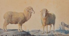 1787 watercolour drawings, Rambouillet, Bergerie nationale © château de Versailles, France Male and female merino sheep born in Spain and recently imported to France.  to the experimental farm Louis XVI created in 1786 at the royal estate in Rambouillet.
