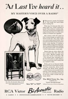 Breed Of Rca Advertising Dog