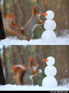 Sculptures sur Neige - Snow Art - Noël - Christmas