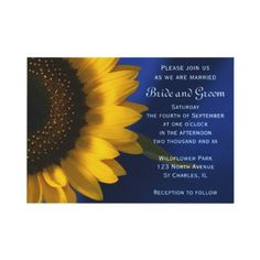 Invite your friends and family to your upcoming nuptials with the pretty #Sunflower on Blue #Wedding #Invitation . Customize it with the names of the bride and groom and marriage ceremony details. This classy custom flowery wedding invite features a floral photograph of a yellow sunflower blossom. Perfect for an elegant June, July or August summer, September, October or November fall or sunflower wedding theme.