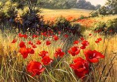 art poppies photos - Google Search