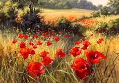 art poppies photos - Google Search