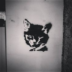 La nuit tous les chats sont gris... #pochoir route d'agde #Toulouse  #latergram #grey #nb #bw #blackandwhite #noiretblanc  #streetarttoulouse #toulousestreetart #graffyourpinkcity #urbanart #culturesurbaines #ByToulouse #visiteztoulouse #igerstoulouse #wallart #wall #streetarteverywhere #streetartphotography #instastreetart #mural #muralart #tmoua #welovestreetart #cat #catsofinstagram