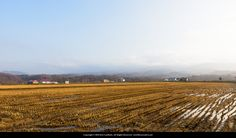 https://flic.kr/p/PksUt1 | Fukui district in Niseko town | I recently moved house from Kutchan town to Niseko town. Had been living in an apartment for 6 years and now bought my own house. These are the fields right in front of our house.  Copyright © 2016 Kris Gaethofs - All rights reserved