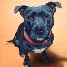English Staffordshire Bull Terrier EARL patiently asks for... a walk? a treat? ... as he represents this listing for the 18x18 inch original custom pet portrait oil painting by puci, from your photos.  Commission a pet portrait by puci of YOUR beloved pet. ~ I create the pre-painting composition for you OK using the magic of Photoshop. ~ Payment is made via Etsy only after youve seen photos of the finished painting. ~ The 3/4 inch thick sides are painted with a hook on the back for immediate…