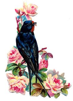 Swallow with Pink Roses