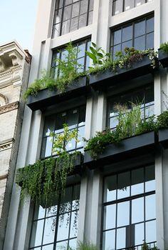 Facade Architecture, Concept Architecture, Landscape Design, Garden Design, House Design, Green Facade, Home Upgrades, Dream House Exterior, Flower Boxes