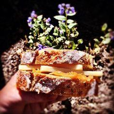 Alpindon Cheese #CDNcheese #simplepleasures