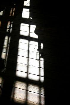 Shadows on an old hardwood floor.