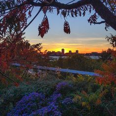 A perfect #ThisIsFall sunset from The High Line, NYC. Photo courtesy of inmyvisions on Instagram.