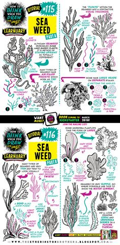 How to draw SEAWEED tutorial by STUDIOBLINKTWICE.deviantart.com on @DeviantArt
