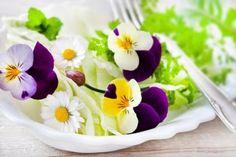 Flores fazem bem para os olhos, mas também para o paladar e cheiro. Algumas flores são colocadas em saladas, omeletes, molhos, geleias e chás e seus benefícios são múltiplos para o corpo.