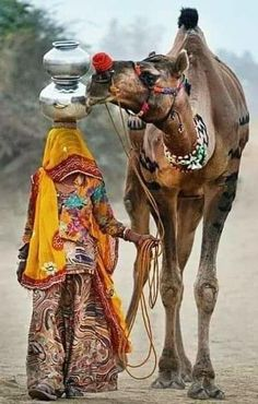 Camel in rajasthan Rajasthani Painting, Rajasthani Art, Village Photography, Ancient Greek Architecture, Gothic Architecture, Rural India, Amazing India, Indian Art Paintings, India Culture