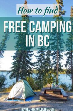 Would you like to go camping? If you would, you may be interested in turning your next camping adventure into a camping vacation. Camping vacations are fun and exciting, whether you choose to go . Family Camping, Go Camping, Camping Hacks, Outdoor Camping, Outdoor Travel, Camping Ideas, Camping Supplies, Camping Essentials, Camping Hammock