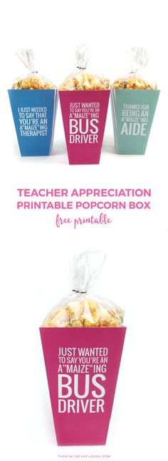 Teacher Appreciation Week Gift | Don't forget about the aides, bus drivers and therapists that help your kiddos out each and every day! Click through to download your free printable popcorn boxes for all those special helpers!