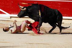 El diestro Iván Fandíño, triunfador de la tarde al cortar tres orejas, es volteado por su primer toro, esta tarde en el cuarto festejo taurino de las fiestas de San Fermín 2014, en el que compartió cartel con Juan José Padilla y Juan del Álamo, con reses de la ganadería de Victoriano del Río. EFE/Javier Lizón -