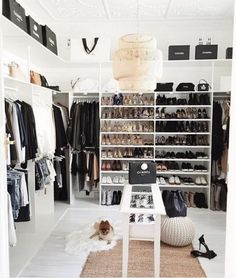 Enviable closet space: How to turn your spare room into your dream walk-in wardrobe (on a budget). Wardrobe Room, Walk In Wardrobe, Closet Bedroom, Master Closet, Closet Space, Spare Room Walk In Closet, Teen Closet, Glam Closet, Entryway Closet