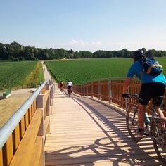 280 chilometri dalla Valcamonica al fiume Po E Bike Trekking, Wonderful Places, Beautiful Places, Travel Around The World, Around The Worlds, Gq, Pedestrian Bridge, Tours, Next Holiday