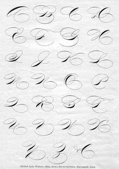 ✍️ Sensual Calligraphy Scripts ✍️ initials, typography styles and calligraphic art - Anna Stutt-Gittins