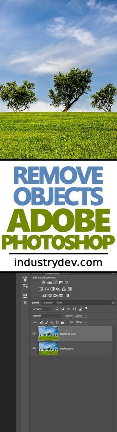 Removing Objects with the Patch Tool in Adobe Photoshop: Have you ever taken a photo that included something that you simply didn't want there? I'm sure you have. We all have. Did you know that Adobe Photoshop offers a method for removing objects by using its Patch Tool? No? Well, in my latest post, I complete a small project where I remove one of the trees in the photo you see here. At the end of the post, it's nowhere to be found. Click through to learn how to do it.
