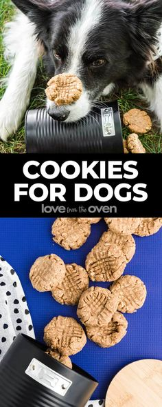 Dog Cookie Recipe • Love From The Oven Homemade Food Gifts, Easy Homemade Recipes, Best Homemade Dog Food, Homemade Dog Treats, Dog Cookie Recipe Easy, Dog Cookie Recipes, Dog Treat Recipes, Oven Recipes, Chocolate Peanut Butter Cookies
