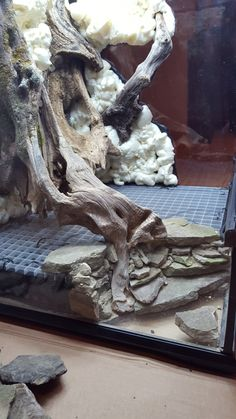 Click the image to open in full size - Aquarium - Terrariums Gecko, Decor Terrarium, Terrarium Reptile, Aquarium Terrarium, Gecko Vivarium, Reptile Habitat, Reptile Room, Reptile Cage, Reptile Enclosure