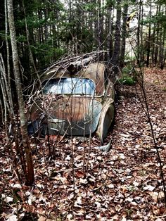 Abandoned in the woods. Forgotten Old Car. Source google.com