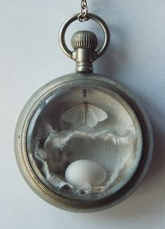Anne Arden McDonald, Dreaming of Flying (hummingbird egg, moth, fabric)