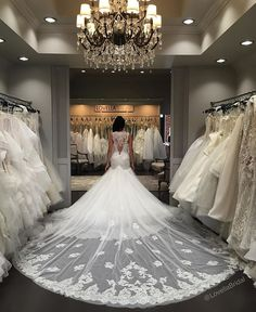 It's a beautiful Sunday morning with @inesdisanto couture bridal gowns! Last day to meet Ines Di Santo herself in store! This beauty is the latest addition to our gown selection! #inesdisanto #inesdisantorealbride #iaminesdisanto #wedding #weddingday #fashion #style #engaged #gettingmarried #instagood #losangeles #cali #fiance #dreamwedding #dreamy