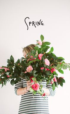 Spring is really here  |  The Fresh Exchange