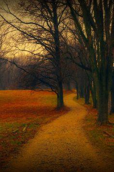Follow the Mystical Path by  Allan Cabrera