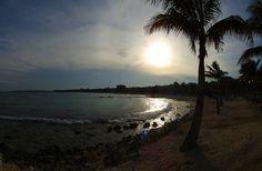 Mar Caribe - México QRoo 2011 0059 by Lucy Nieto, via Flickr