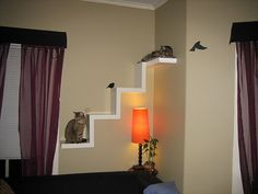 Ikea Lack Shelf made into cat furniture by Nefarious Cupcake, via Flickr // i absolutely need this! ive been working on a pet cat behavior thing for work and reading about cats stuck in houses all day without enrichment, stimulation, or entertainment =[