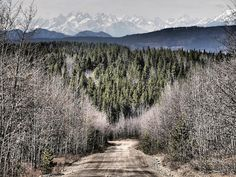 Sawtooth mountains on the Telegraph Creek road Sawtooth Mountains, Adventure Time, Places Ive Been, Magic, Culture, Artwork, Travel, Work Of Art, Finn Jake