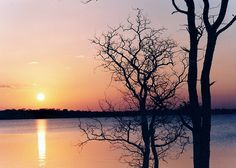 Sunset in Zimbabwe  CC MacKenzie WANA Commons