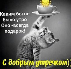 Света. 7 Good Morning Good Night, Good Morning Wishes, Happy Tuesday Quotes, Happy Quotes, Emo Quotes, Funny Quotes, Crush Quotes, Happy Weekend Images, Inspiring Quotes Tumblr