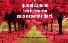 Tu eres dueño de tu propio destino y, sólo tú, puedes formarlo! Feliz inicio de semana, amigos!!! miblog.tatoymar.com