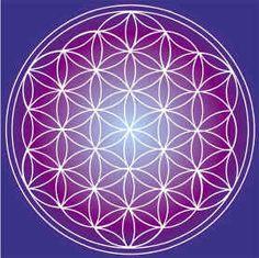 Life flower, geometria sacra