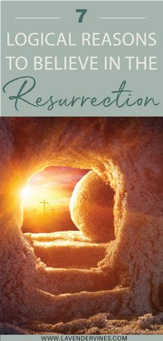 Easter is the time we celebrate Jesus' resurrection, however if you've ever doubted the truth behind Jesus' life, death, and resurrection this post is for you. Here are 7 reasons Jesus is risen and why you should believe, too! #Jesusisrisen #Heisrisen #easter #happyeaster #eastersunday #Jesus #resurrection #risen Jesus Is Risen, He Is Risen, Jesus Christ, Easter Bible Verses, Bible Verses For Women, Christian Faith, Christian Women, Jesus Resurrection, Praying For Your Family