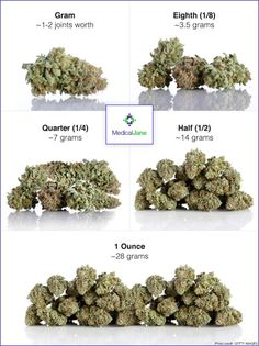Learn and compare how much an eighth of weed weighs compared to a gram, quarter, half ounce, and ounce with this helpful guide from Medical Jane.