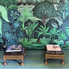 """""""Beautifully painted walls @28kothi as photographed by @krsnaamehta  and designed by Nur Kaoukji of ecru. We are so proud! #ecru #Jaipur #guesthouse…"""""""