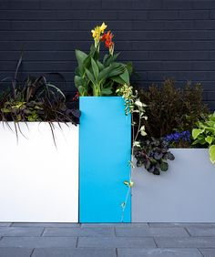 Made from recycled plastic, Tessellate square planters are versatile and durable. Available in three heights, these planters have false bottoms, allowing you to customize the planting height. Use solo, or pair with other Tessellate Planter shapes to make a larger arrangement. #Loll #LollDesigns #recycledplastic #outdoorfurniture #sustainablefurniture #modernoutdoorfurniture #outdoorliving #patioinspiration #backyardinspo #planters #outdoorplanters Sustainable Furniture, Modern Outdoor Furniture, Modern Patio, How To Clean Furniture, Outdoor Planter Boxes, Square Planters, Outdoor Planters, Stainless Steel Bolts, Red Sunset